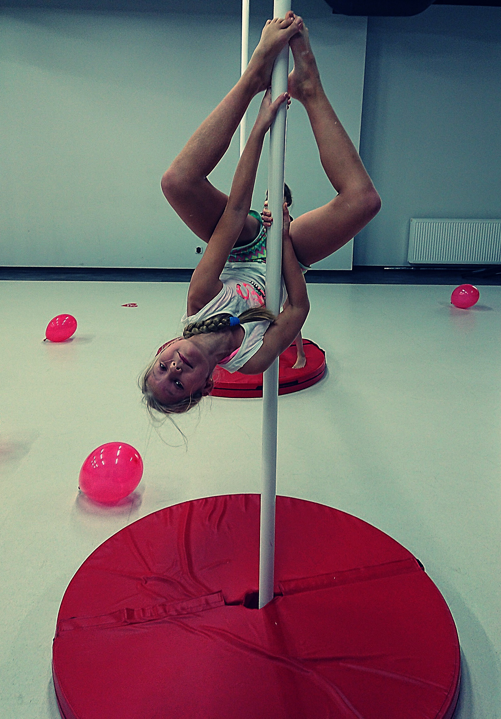 pole dance net
